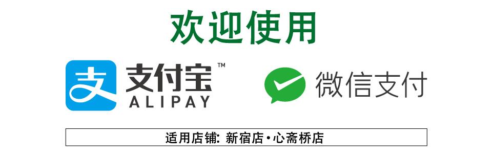 Alipay・WeChat Payバナー(外国語:メインバナー)
