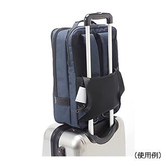 is.bag2.jpg