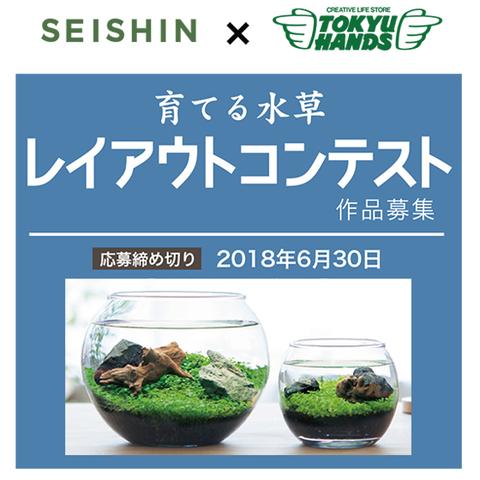 育てる水草レイアウトコンテスト<br>6月30日(土)まで