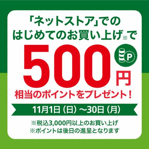 【ネットストアがお得】はじめてのお買い上げで500ポイントプレゼント! ~11/30(月)