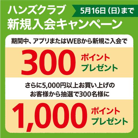 ハンズクラブ 新規入会で300ポイントプレゼント!<br>さらに税込5,000円以上お買い上げの方に、抽選で1,000ポイントプレゼント!