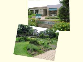 会場は、埼玉県・飯能市にある「薬香草園」。広大な敷地に約200種類のハーブが育てられ、さらにハーブレストランやベーカリー、手づくり体験ができる工房なども併設。豊かな自然の中で、ハーブの魅力を存分にお楽しみいただきました。