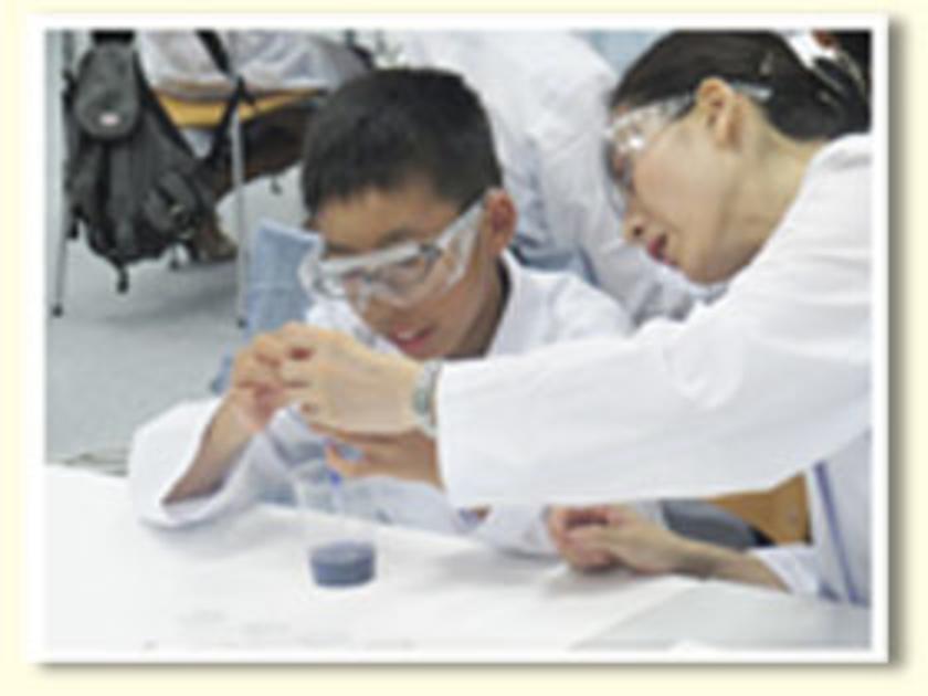 紫キャベツに含まれるアントシアニンという成分を利用して、さまざまな液体のPHを調べます。