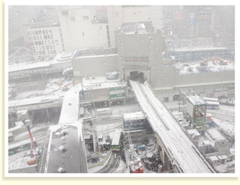当日の東京は、20年ぶりの大雪!ご覧の通り、渋谷駅もすっかり雪化粧をしております。なんとか電車が動いていたこともあり、開催の運びとなりました。当日は全体の約半分、8名の方に参加いただきました!ありがとうございます~。