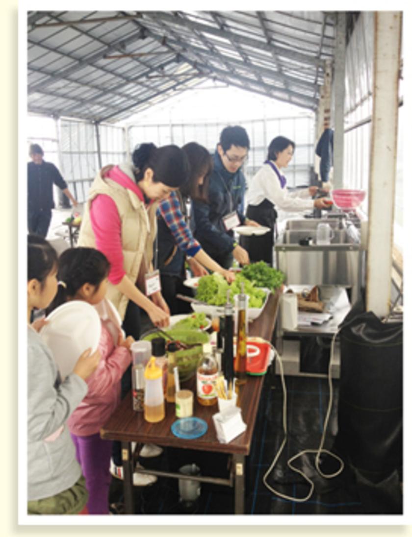 収穫した野菜は、サラダバー形式で自由に選んでいきます。収穫したての野菜と、地元のおいしいお弁当でお昼休憩。