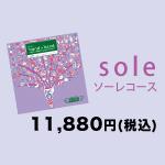 sole ソーレコース 11,880円(税込)
